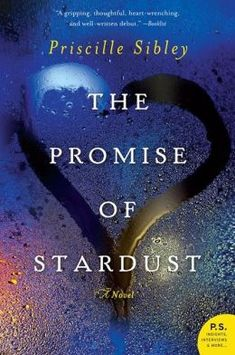 The Promise of Stardust: A Novel. 3.5-4/5. Interesting topic, especially being a neonatal nurse.