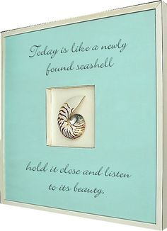 A Newly Found Seashell... Natural Nautilus Shell Art and Beach Quote