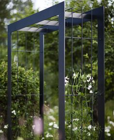 Garden: Like this archway. Enjoy having sweet peas in the summer.