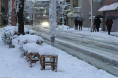 Efacts and Stranges: After 140 years .. snowing in Tokyo