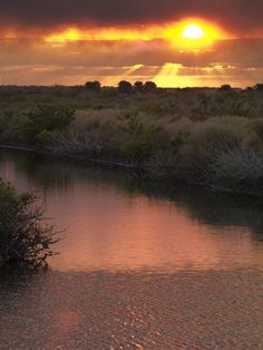 ✯ Merritt Island Sunset