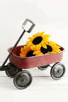 """Little Red Wagon 14"""""""