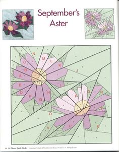 September Aster - Picasa Web Albums