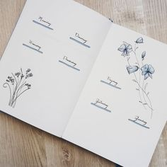 Bullet journal weekly layout, wildflower drawings, cursive headers. | @upsidedown.joyce
