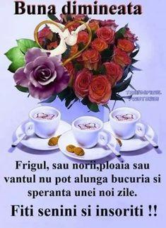 Imagini buni dimineata si o zi frumoasa pentru tine! - BunaDimineataImagini.ro Good Night, Good Morning, Joelle, Months In A Year, Romantic, Babe, Beauty, Spring, Nighty Night