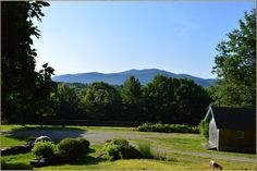 517 Edgerton Dr, Pawlet, VT 05761 - Home For Sale and Real Estate Listing - realtor.com®