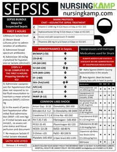 Medical surgical nursing - Sepsis What nurses need to know Sepsis Assessment Cheat Sheet – Medical surgical nursing Medical Surgical Nursing, Cardiac Nursing, Med Surg Nursing, Nursing Assessment, Pharmacology Nursing, Pathophysiology Nursing, Nursing School Notes, Nursing Schools, Nursing Courses