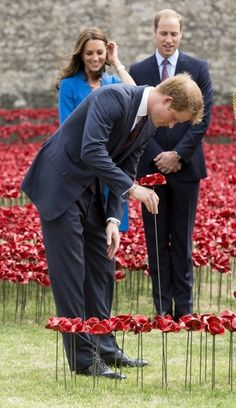 Kate and William watch as Prince Harry plants a poppy at the Tower of London