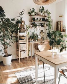 bohemian dining room with wall-mounted shelving and bookcases diy Room decor Dinner Guests Will Swoon Over These 10 Dining Room Storage Ideas Room Interior, Interior Design Living Room, Living Room Decor, Bedroom Decor, Decor Room, Apartment Interior, Ikea Boho Bedroom, Plants In Living Room, Earthy Living Room