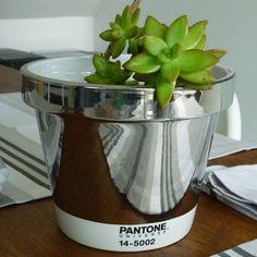 Pantone Universe™ by Serax