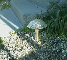 glass mushroom glass art, glass mushroom, glass garden