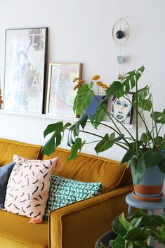 MY ATTIC / Binnenkijker / hometour / plants / huiskamer / livingroom Photography: Marij Hessel www.entermyattic.com