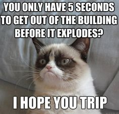 You'll probably get your wish grumpy cat, because with my luck i probably will.....