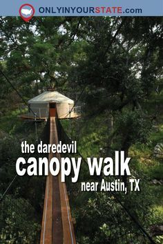 Canopy Walk In Texas Will Make Your Stomach Drop Travel Texas Vacations, Texas Roadtrip, Texas Travel, Travel Usa, Family Vacations, Hiking In Austin Texas, Travel Luggage, Dallas Travel, Waco Texas