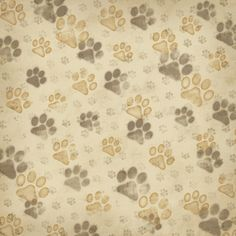 Karen Foster Design - Dog Collection - 12 x 12 Paper - Love Those Paws at Scrapbook.com $0.75
