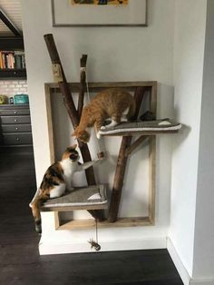 Great idea for cat owners # cat owner - Tiere - Katzen Cat Shelves, Cat Playground, Cat Scratching Post, Cat Room, Cat Condo, Pet Furniture, Modern Cat Furniture, Cat Tree, Diy Stuffed Animals
