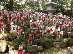 anari fox | Inari foxes