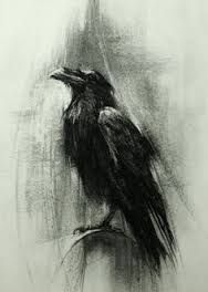 Image result for raven charcoal