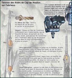 Fabriano, Shpountz 44-40