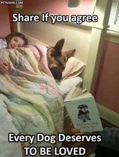 Wicked Training Your German Shepherd Dog Ideas. Mind Blowing Training Your German Shepherd Dog Ideas. Cute Puppies, Cute Dogs, Dogs And Puppies, Doggies, Animals And Pets, Funny Animals, Cute Animals, I Love Dogs, Puppy Love