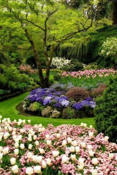 This garden design would make my back yard look bigger and serve to be beautiful, too.^