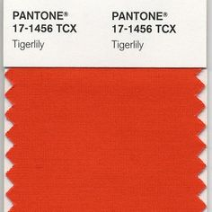 PANTONE 17-1456 Tigerlily was the 2004 Color of the Year