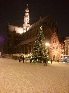 Grote Markt in de nacht met de Kerstboom