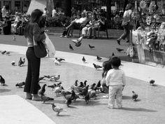 barcelona Barcelona, Black And White, Monochrome, Black White, Blanco Y Negro, Barcelona Spain, Black N White