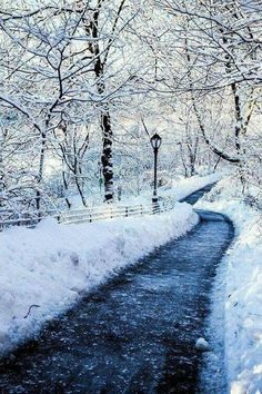 Winter Wonderland.... Relax with this nature photo. #Relax more with this #free #music with #BinauralBeats that can #heal you. #landscaping #LandscapingIdeas #landscapeDesign