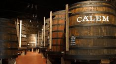 Top 10 Wine Tours You Can't Miss in Porto. Discover the famous Port wine cellars.