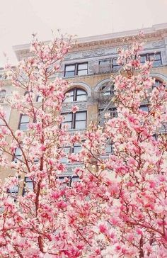 Springtime, Union Square, New York City NYC New York City Travel Honeymoon Backpack Backpacking Vacation Springtime Pictures, The Places Youll Go, Places To Go, Manhattan, New York City, I Love Ny, Concrete Jungle, Spring Time, Nyc Spring