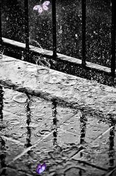 Yagmur sesi<br> Rainy Day Photography, Rain Photography, Animal Photography, Creative Photography, Rain Wallpapers, Slow Shutter Speed, Water Patterns, Kissing In The Rain, Water Ripples