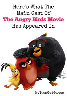 The Angry Birds movi