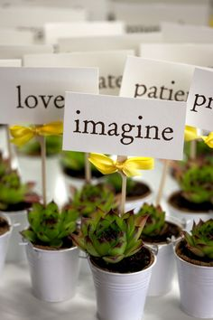 Succulents: Perfect eco-friendly wedding favors, gifts, centerpieces (Cute maybe with the birds instead of words) Succulent Wedding Favors, Succulent Gifts, Unique Wedding Favors, Diy Wedding, Wedding Gifts, Wedding Ideas, Wedding Centerpieces, Wedding Stuff, Succulent Ideas