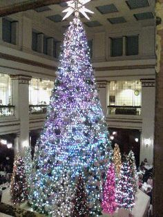 Swarovski's annual lighting of the beautiful Christmas trees in the Walnut Room at Marshall Fields (now Macy's) in Chicago