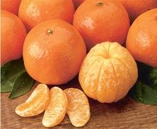 The citrus aroma of orange, mandarin, and tangerine all have their place during the holidays! Find out how.
