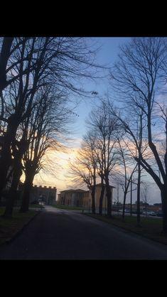 Pisa 01/2018