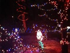 Zoo Lights, Calgary, Christmas, Beauty, Xmas, Navidad, Noel, Beauty Illustration, Natal