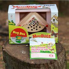 Minibugs_bug_box2