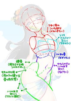 Female body structure