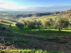 Tuscany countryside, Chianti area