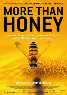Het gaat niet goed met de meeste bijenpopulaties. Overal ter wereld sterven of verdwijnen bijenvolkeren, een fenomeen dat inmiddels bekend staat als 'colony collapse disorder'. Er zijn al diverse oorzaken aangedragen voor de teloorgang van mondiale bijenpopulaties. Toch ontbreekt een eenduidig oordeel en houden veel wetenschappers het vooral op een opeenstapeling vandiverse factoren.