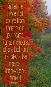And let the peace that comes from Christ rule in your hearts. For as members of one body you are called to live in peace. And always be thankful. Christian Marriage, Christian Women, Christian Quotes, Christian Life, Always Be Thankful, Thankful Heart, Biblical Verses, Scripture Verses, Bible Quotes