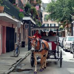 #Repost @homewoodsuitesfrenchquarter  Have you ever seen a horse with purple hooves? Or taken a carriage ride with one? Now's the time! Catch a ride in the French Quarter just a few blocks from our front door. #onlyinnola : @sfrankimagery91