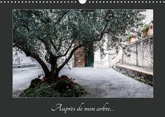 Lecture libre Auprès de mon arbre (Calendrier mural 2020 DIN A3 horizontal), Auteur : CALVENDO #BookWorld #PopBooks #WomensFiction #Books #IReadEverywhere #AmReading #FreeBooks #BookChat #BookAddict #BookPhotography #Fiction #Bookshelf #GoodReads #Suspense #LitFict Helen Harper, Jonathan Coe, Albert Uderzo, Alphonse Daudet, Agatha Christie, Laura Lee, Stefan Zweig, Free Reading, Ebook Pdf