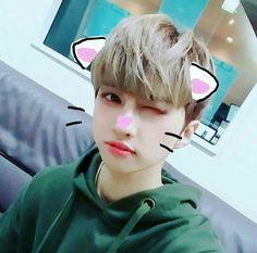 Vixx Ken cute