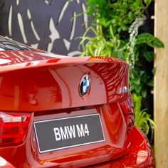 Sanctum design gallery showcases fresh ideas in feature screens & gates Fence Screening, Bmw M4, Backyard Landscaping, Screens, Gate, Gallery, House, Design, Woodworking