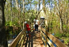 Travel for disabled: Florida's best boardwalks provide easy access