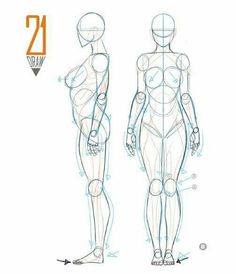 really cool drawings Human Anatomy Drawing, Drawing Female Body, Human Figure Drawing, Figure Sketching, Drawing Body Proportions, Body Reference Drawing, Art Reference Poses, Drawing Tips, Anatomy Sketches