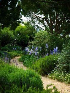 Grüner Garten, Garten Terrasse, Vorgarten Anlegen, Bepflanzung,  Blumenbeete, Gartenweg,